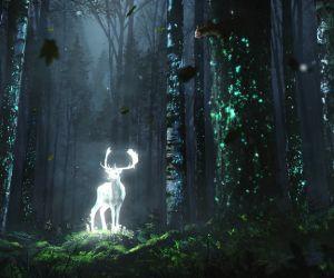 Fantasy Wild Deer Live Wallpaper